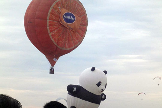 Balloon-Flight-2012-Sunkist-Panda