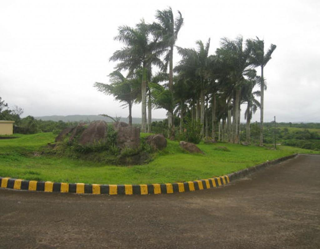 Caliraya Subdivision (2)