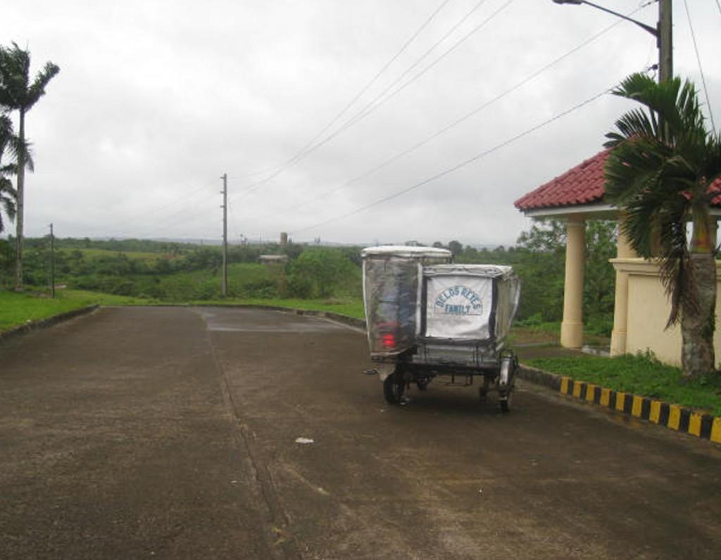 Caliraya Subdivision (3)